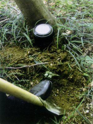 tierbestattung-leipzig-tierhain-wald-asche-vergraben